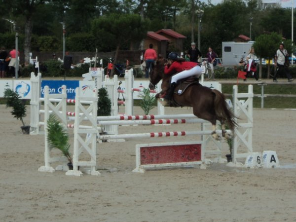 7 juillet 2014 : CSO As Poney 2C