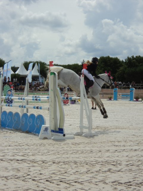 7 juillet 2014 : CSO du CCE As Poney élite GP