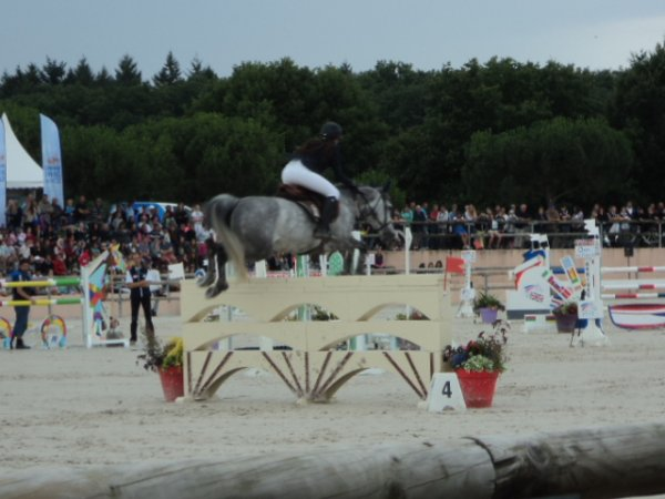 7 juillet 2014 : CSO As Poney élite Finale