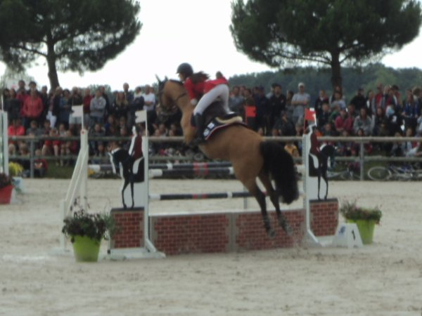 7 juillet 2014 : CSO As Poney élite excellence Finale