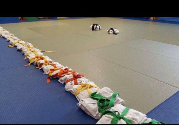 JUDO meilleur sport initial pour l UNESCO