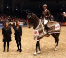 Photo de HORSE-SCHOW
