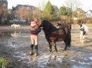 Photo de a-dada-sur-mon-cheval-x3