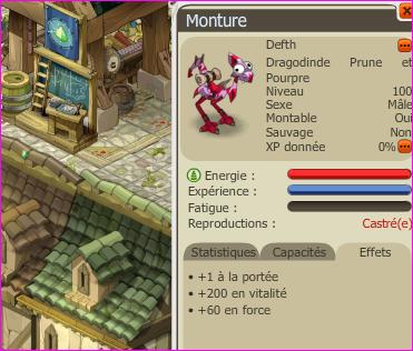 Dragodinde Prune/Pourpre