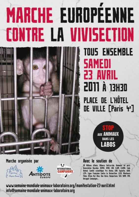 Stop...Mettre fin à la vivisection vous semble être possible?