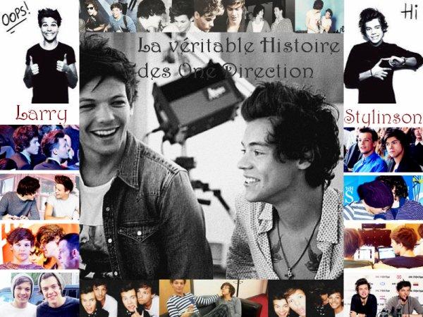 La véritable histoire des One Direction