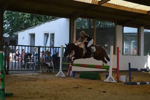on l'a même mis serieusement a l'obstacle avec sa cavaliere actuelle aurore et a fait son premier concours :)