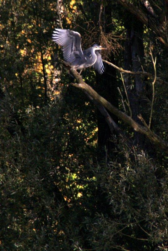 dimanche 16 octobre 2011 10:59