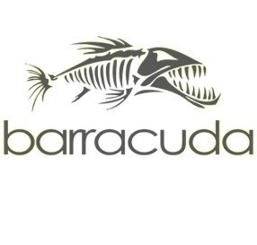2 barracudas et un Calamar au Lavandou