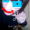 Photo de H-Knight