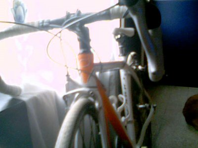 lavant dmon bike