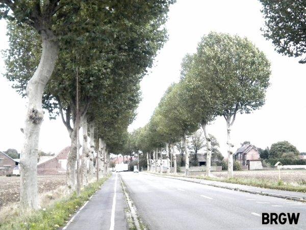 Les routes