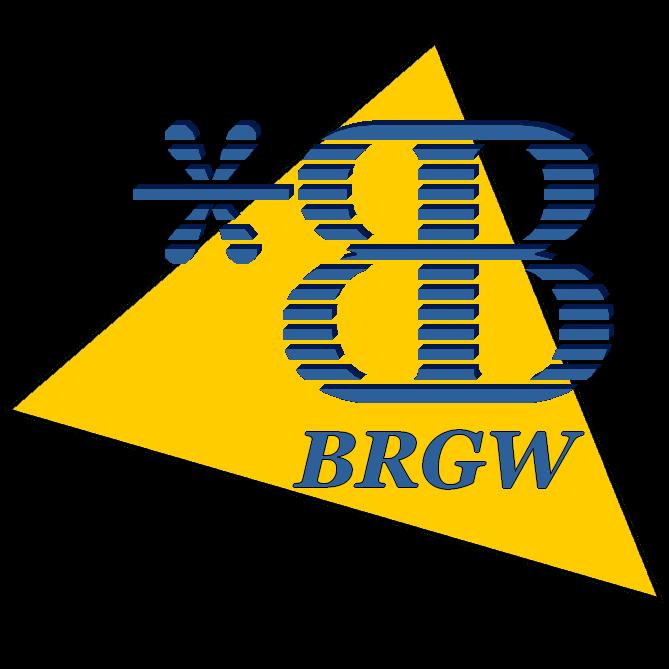 BRGW, bienvenue dans le monde connecté!