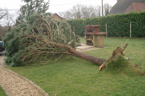 Tempête le 24 Janvier 2009