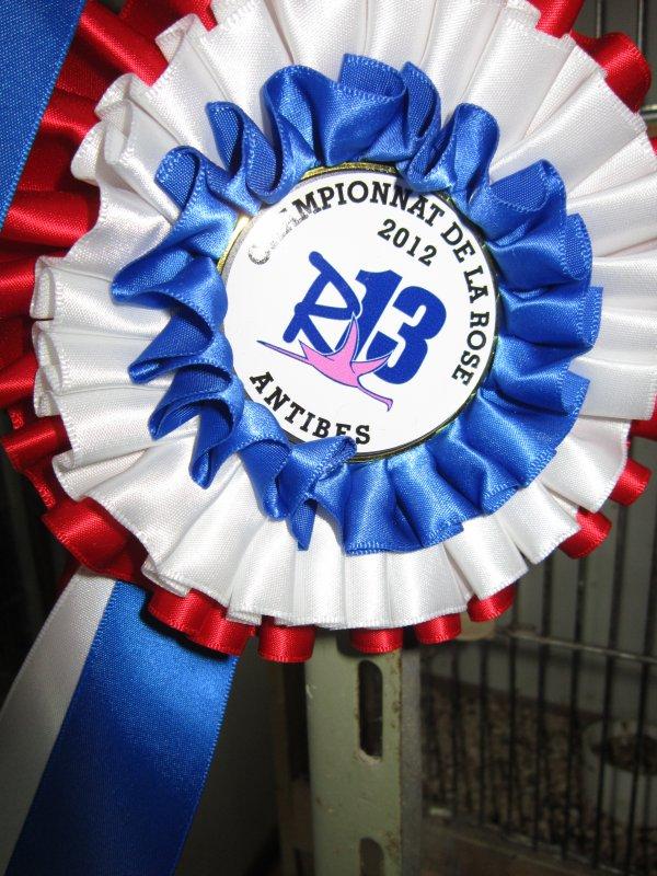 Championnat Régional 2012 à Juan les Pins