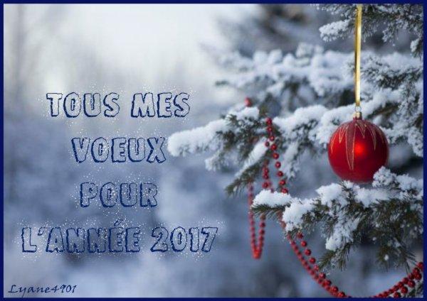 Adieu 2016- Bonjour 2017