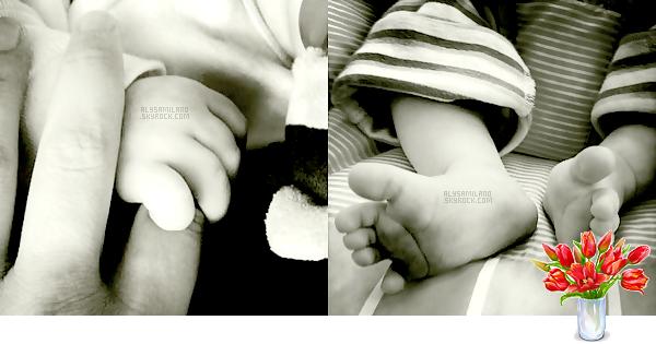 . Alyssa a une nouvelle photo de profil sur son twitter, qui n'est autre que la main de son fils prennant son doigt. Mais aussi une photo d'elle ainsi que deux de ses chiens, en train de pousser la poussette ! C'est tellement cute et chou a la fois ! ♥ .