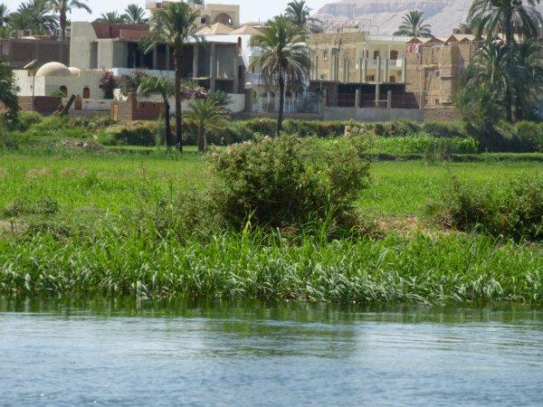 photo  de vacance d'égype 2012