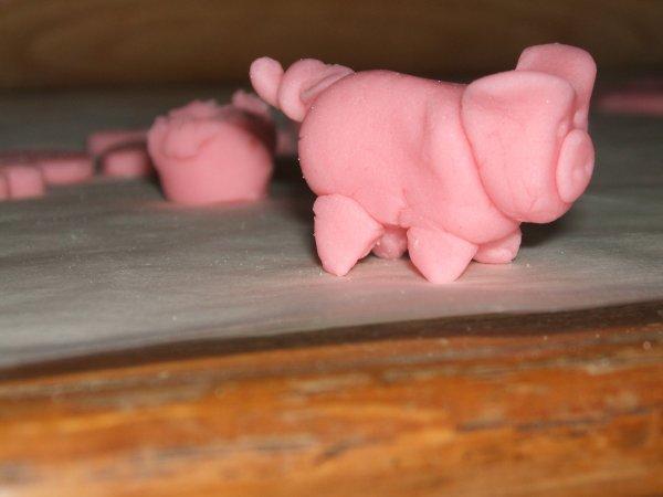 un petit cochon...