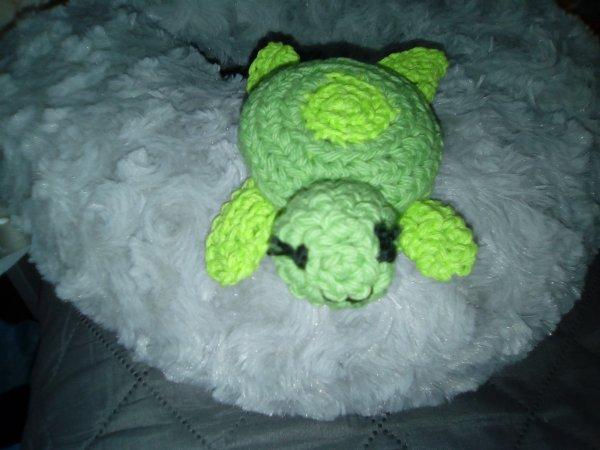 une jolie petite tortue