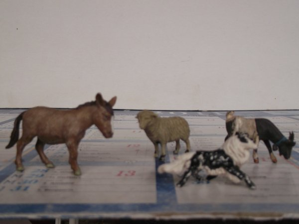 Restauration d'animaux