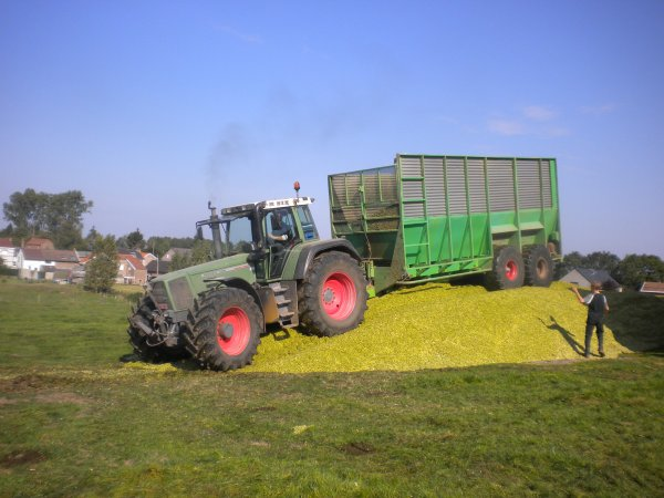 c'est le debut des maïs pas mal le 926