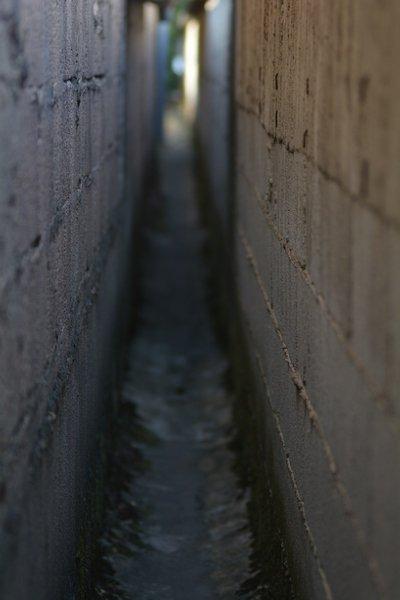 Entre les murs