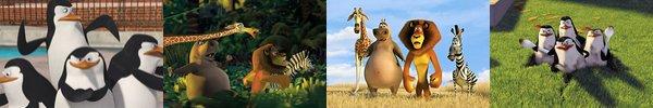 ♥ Madagascar ♥