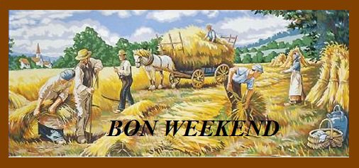 Bon weekend à tous et une pensée aux moissonneurs qui font de grandes journées et qui jonglent entre les orages . Chez nous c'est bientôt fini et les vacances vont arrivées ensuite pour certains ...........