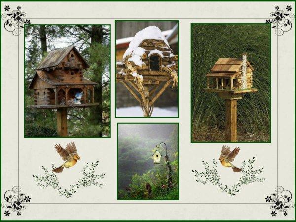 Cette semaine sera la semaine des sujets Nature et Décoration pour mon blog  !! On commence par les Oiseaux , l'hiver arrivant à grands pas ,il faut penser à ces petites créatures qui vont souffrir du froid et du manque de nourriture . Voici quelques idées de niches, et mangeoires originales que j'ai trouver sur le net .........
