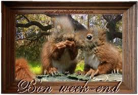 ........................           Bon weekend les amis !!!!           ..................................