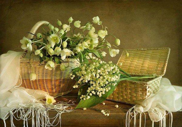 Bon weekend de 1 er mai à tous , et si la fraîcheur est de rigueur , que ce brin de muguet vous apporte bonheur et un peu de chaleur ......