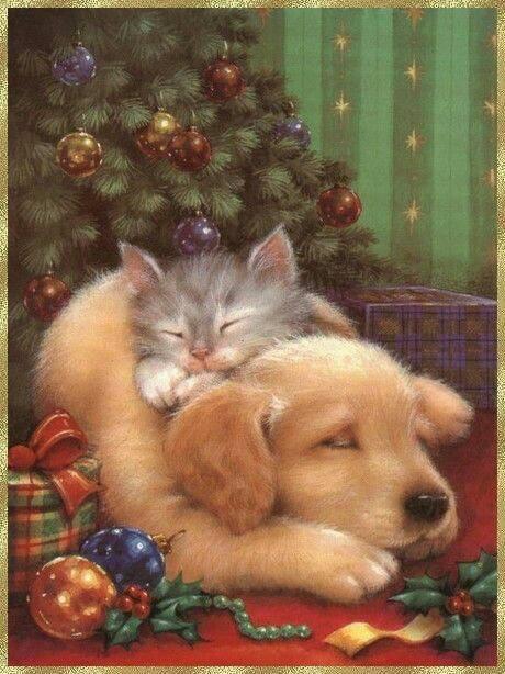 Même nous , on attend le père Noel  !!!!  Bonne journée à vous les amis , le weekend arrive  !!