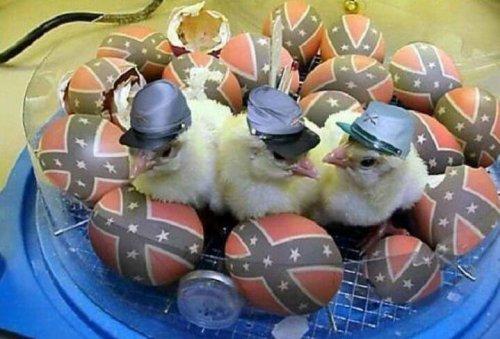 Joyeuses Pâques à vous les amis , même en cette période de confinement il est bon de s'octroyer , le temps d'une journée , un peu de bonheur avec plein de douceurs sucrées ....