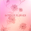 Photo de Intense-flower
