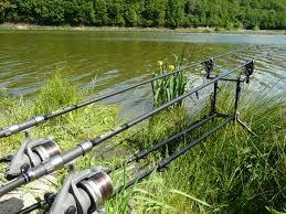 La pêche à la carpe