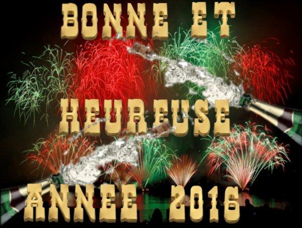 Bonne et heureuse année 2016 :