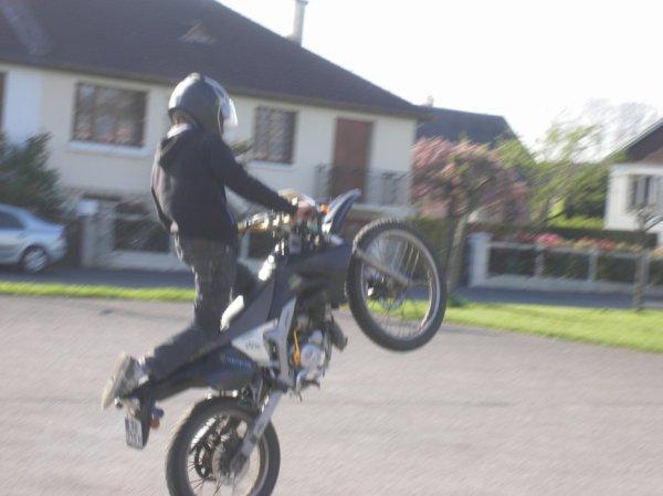 stuntt d alex