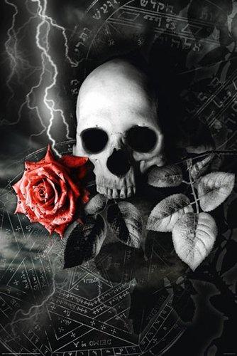 pas peur de la mort @ Popiline @