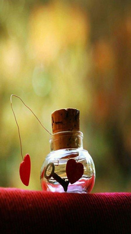 L'espoir et notre amour pour la vie est notre boussole ❤