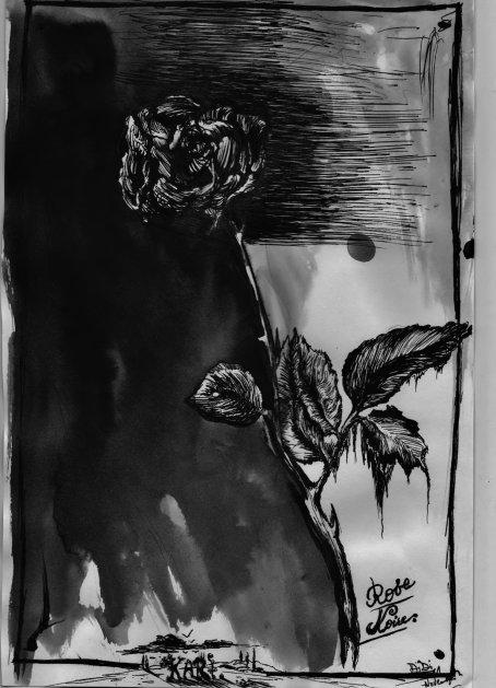 Rose Noire . Encres .