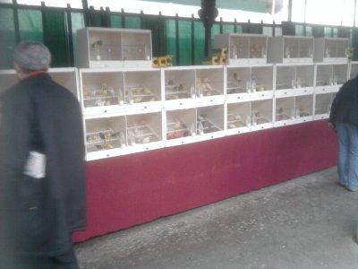 marché aux oiseaux paris