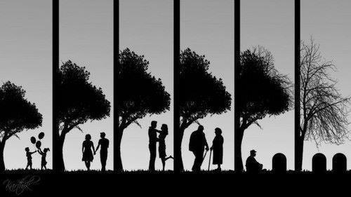 Ne jamais oublier de vivre sa vie car la vie elle ne nous oubliera jamais...
