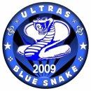 Photo de ultras-blue-snake