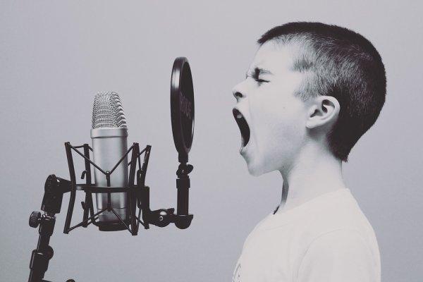 Un peu de bordel s'il vous plaît, il y en a ici qui veulent du bruit ! ©Perspective-cognitive