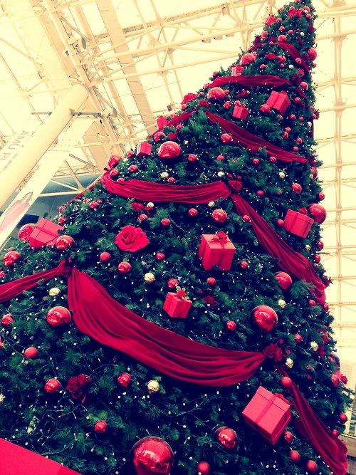 L'enfance c'est de croire qu'avec le sapin de Noël et trois flocons de neige toute la terre est changée.