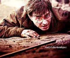 . Harry Potter. .