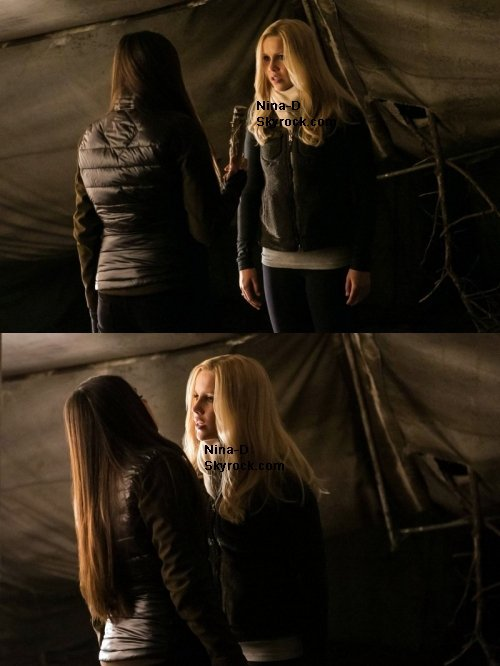 "The Vampires Diaries, synopsis & stills 4x13 ""Into The Wild""- 4x14 "" Down The Rabbit Hole""-4x15 ""A Few Good Men"""