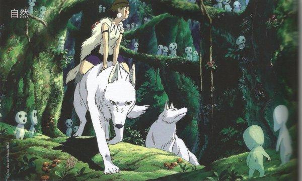 le maitre : Miyazaki Hayao