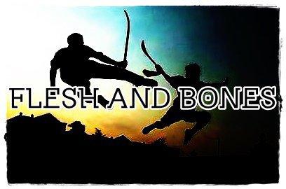 Fiction n°1 : Flesh And Bones ( Tch0upi/narusasu-feat-thorki )